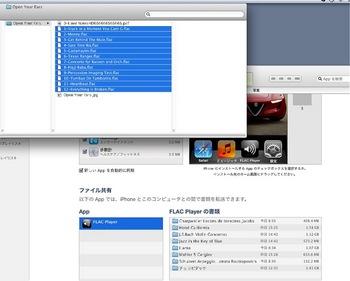 2011-11-27 1.jpg